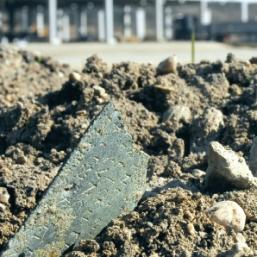 Descoperire arheologica de exceptie la Polus