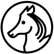 Despre cai mici, artă şi comunicare. Sau invers